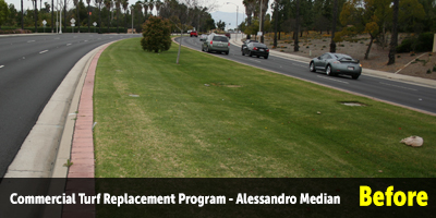 Turf Replacement Alessandro Median