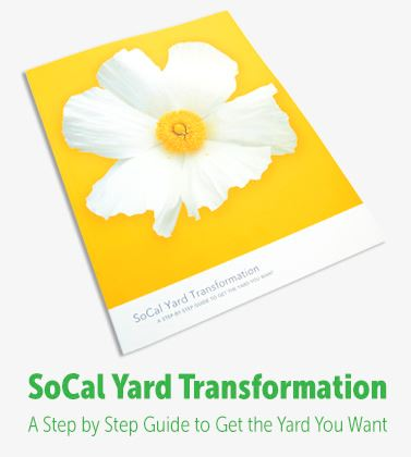 SoCal Yard Transformation 2017