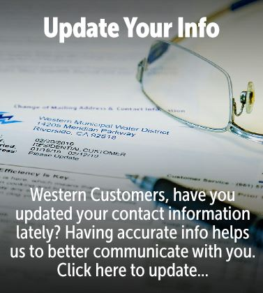 Update Your Info
