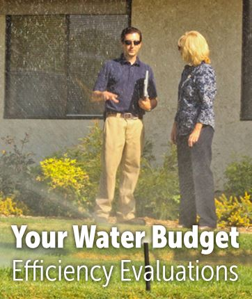Your Water Budget