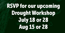 Drought Workshop